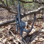 bushmaster10tree